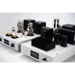 CR01 HiFi audio Preamp 101 vacuum tube amplifier monoblock pre-amp pair with protective cover
