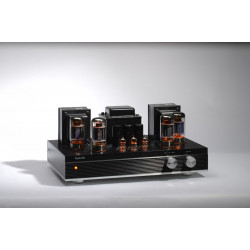 EP65 audiophile 6550x4 vacuum tube amplifier HiFi audio push-pull integrated amp with remote and protective cover
