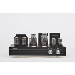 ES30 Single ended stereo tube Amp Hi-Fi Integrated amplifier 300B Vacuum tube with protective cover