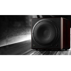 H10 SUB Active Subwoofer One-way vented active subwoofer active speaker remote control 85dB  4 ohms rosewood  10\